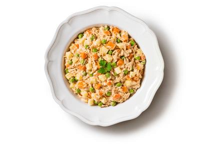maionese-de-frango-com-legumes-prato_final
